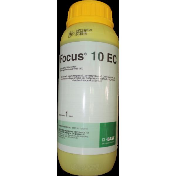 FOCUS 10EC